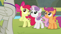 "Apple Bloom ""did you say 'problem'?"" S8E6"