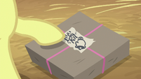 Apple Bloom points at Sugar Belle's smudged name S8E10