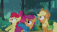 Applejack, Apple Bloom, and Scootaloo in shock S03E06