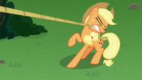 Applejack pulling her lasso taut S9E25
