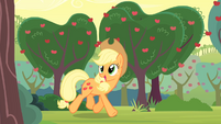 Applejack walking through Sweet Apple Acres S4E07