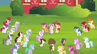CMC looking at the crowd of foals S4E15