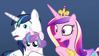 Cadance and Shining Armor hear winterzilla roar MLPBGE