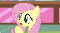 "Fluttershy ""got plenty of cupcakes"" S8E2"