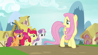 "Fluttershy ""important magical research project"" S9E22"