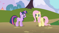 Fluttershy doesn't immediately respond to Twilight S1E01.png