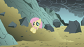 Fluttershy in a pile of dirt S1E07.png