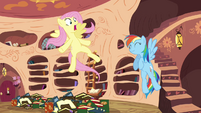 Fluttershy surprised that she is being appointed for the mission S3E05