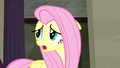 Fluttershy wonders what Rarity would want S6E9.png