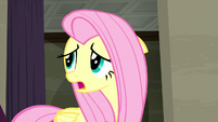 Fluttershy wonders what Rarity would want S6E9
