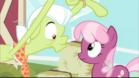 Granny Smith and Cheerilee S02E12
