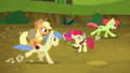 Peachy Sweet and Red Delicious gallop past AJ and Apple Bloom S5E4.png