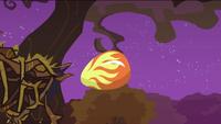 Phoenix egg falling down S2E21
