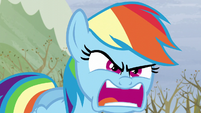 Rainbow -Do I look angry-!- S5E5