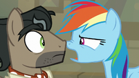 "Rainbow Dash ""isn't that right?!"" S9E21"