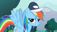 Rainbow Dash -Fine!- S2E07