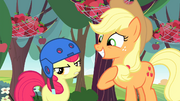 S04E17 Apple Bloom w kasku