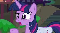 Twilight Sparkle asking for more details S9E5