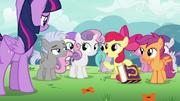 "Apple Bloom ""a cutie mark summer camp"" S7E14"