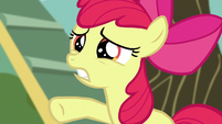 Apple Bloom calling out -just wait a second!- S5E4