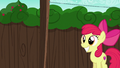 Apple Bloom excited to see her cart S6E14.png