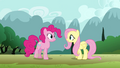 Fluttershy 'I'm so glad you wandered by' S3E3.png