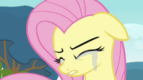 Fluttershy crying 2 S2E22