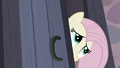 Fluttershy peers into Starlight's room S5E2.png