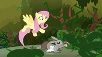 Fluttershy ushering animals to safety S9E2