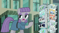 "Maud Pie ""Boulder promised his cousin a postcard"" S6E3.png"