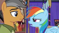 "Rainbow Dash ""sorry, Quibble"" S6E13"