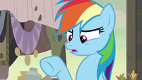 "Rainbow Dash ""the entire town of Somnambula"" S7E18"