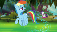 Rainbow Dash -nah, it's too deep- S8E17