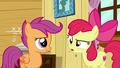 "Apple Bloom ""...easy"" S6E4.png"