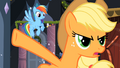 "Applejack ""Rainbow Dash should've flown up there and shut it"" S2E11.png"