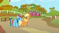 Applejack challenging Rainbow Dash S1E13.png
