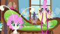 Breezies looking at Fluttershy S4E16.png