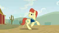Buckball stallion galloping down a dirt road S9E6