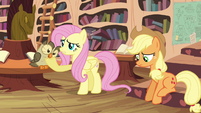 Fluttershy 'should have just pretended' S4E18