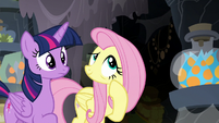 Fluttershy shows the flower to Twilight Sparkle S7E20