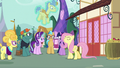 Fluttershy standing up for herself S7E14.png