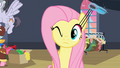 Fluttershy stretching eyelashes S2E11.png