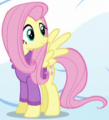 Fluttershy winter clothes ID S5E5.png