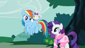 Opal on Rainbow Dash's back S1E14.png