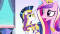 "Princess Cadance ""there may well be a whole army"" S6E16.png"