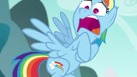 Rainbow Dash in complete shock S6E6
