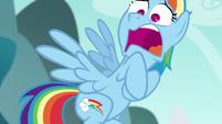 Rainbow Dash in complete shock S6E6