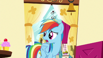 Rainbow Dash looking for Pinkie Pie S6E15