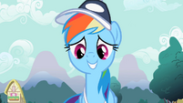 Rainbow Dash smiling S2E07