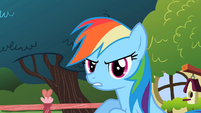 Rainbow Dash sounded like Pinkie Pie S2E10